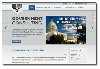 Government Consulting